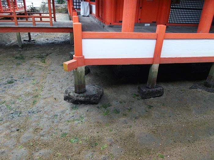 厳島神社の床下