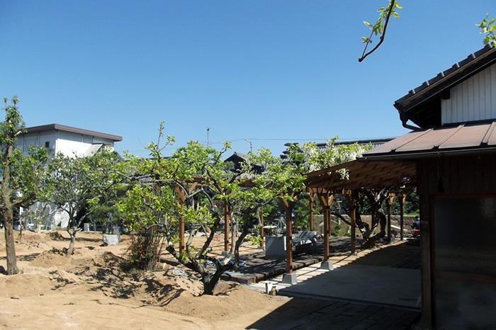 ただいま外構施工中 - 敷地内に藤棚